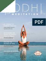 BODHI MEDITATION ENGLISH MAGAZINE Spring 2011.Vol.1 No.1
