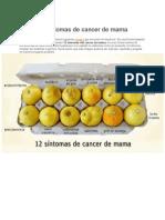 12_síntomas_de_cancer_de_mama_2012