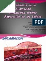 Mecanismos de la inflamación