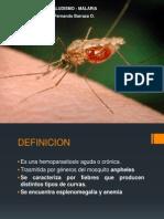 Paludismo - Malaria