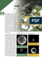 Abeilles-Pollenisation-Biodiversité