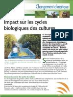 Impact du changement climatique sur les cycles de production (Aficar )