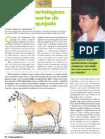 Aspectos Morfologicos Do Cavalo de Vaquejada
