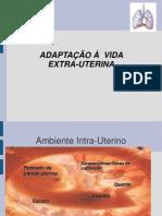 Adaptacao Extra-uterina Atualizar
