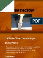 INJERTACION