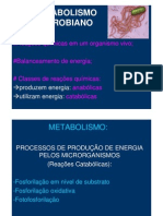 Aula 3 Slides Metabolismo 2008