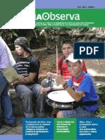Revista CDIA Observa 4