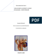 Rolul masajului și kinetoterapiei în discopatia lombară