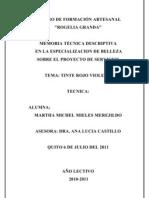 MONOGRAFÍA CORTE, PEINADO Y TINTE