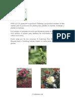 Pindstrup Descripcion Productos (Sustrato)