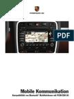 Porsche Cayenne MJ09 MC Bluetooth PD