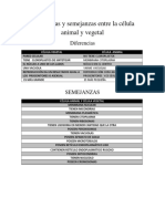 Diferencias y semejanzas entre la célula animal y vegetal