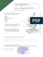 Ficha de avaliação de Ciências da Natureza do 5º Ano 2006