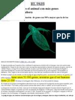 1 Gl Animal Con Mas Genes en El Planeta
