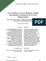 Vid, Viñedos y Vino en Sefarad