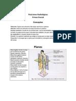1 Posiciones Radiologicas