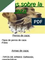 powerpointcazablog