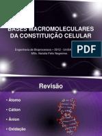 BASES MACROMOLECULARES DA CONSTITUIÇÃO CELULAR - 08 -03