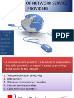 Liability of Network Service Providers
