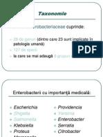 Curs 10 AMG - Salmonella, Shigella