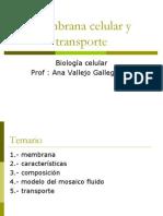Membrana Celular y Trasporte Clase