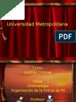 Organizacion de La Policia de PR