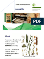 04_Cereal Grain Quality