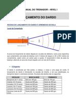 20 - Dardo