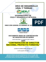 Consultor Director Nacional