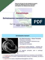 S Schistosoma Mansoni e Esquistosomose