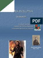 E. La Variacion II-11