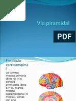 viapiramidal-100505140543-phpapp02