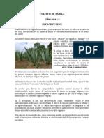 Cultivo Aloe Vera