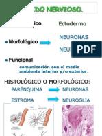 Histologia Del Tejido Nervioso