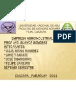 EMPRESA AGROINDUSTRIAL II