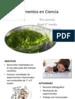 Experimentos en Ciencia- taller JEC 3° (1)
