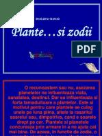 Plante zodii