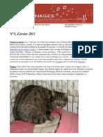 Griffonnages_bulletin n°5-février 2011
