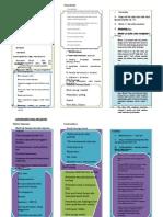 Leaflet Kb Pil Word