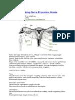 Anatomi Dan Fisiologi Sistem Reproduksi Wanita