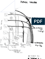 Plexul sacral