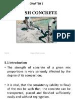 5 Fresh Concrete