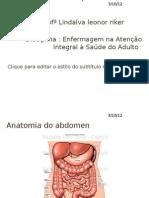 Assistência de Enfermagem ao paciente com Úlcera Peptica