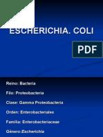 Escherichia
