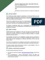 IMSS-02-029 Present de La Determin Anual de La Prima en El s