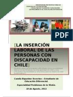 Ensayo Inserción Laboral de personas con Discapacidad en Chile. okei