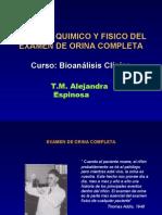 uroanalisis2008