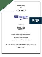 Report on Blue Brain