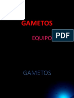 MÉTODOS ANTICONCEPTIVOS Y GAMETOS