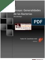 Ensayo- Bacterias